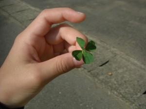 「先生みて!5つ葉のクローバー見つけたよ!」4年生の女の子が見せてくれました(7:45)