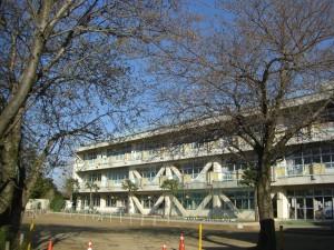 桜の木々と新館校舎(7:10)