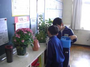 教室の後ろでは植物に水やりをする姿が・・・(8:05)