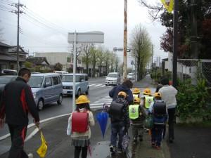 学校へ向かう子どもたち 街路樹が緑色に色づき始めました(7:50)