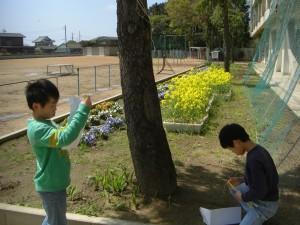 気温を測定する4年生の子どもたち(11:00)