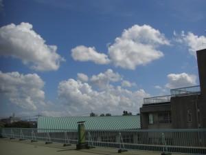 本館校舎屋上から南東方向の空の様子(11:25)