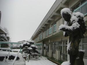 二宮金次郎像も雪で覆われています。(8:00)