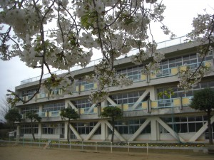 新館校舎と桜(10:00)