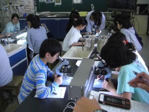 顕微鏡で,いろいろな葉の気孔を観察・記録する子どもたち(14:10)