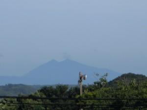 本校屋上から見た筑波山 夏に,はっきり見えるのは珍しいですね。(7:15)