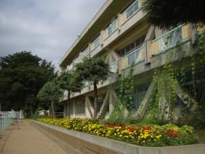 朝日に照らされる新館校舎 マリーゴールドやサルビアの花がきれいですね。(8:20)