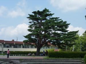 国立那須甲子青少年の家の前で休憩する参加児童のみなさん(12:30)