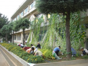 花壇の草取り作業(7:50)