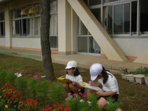 コスモスの花をスケッチする子どもたち(10:25)