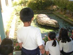 校長室前の池で,カエルを見つめる子どもたち(10:15)
