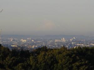 朝日を浴びて白く輝く富士山(7:30)