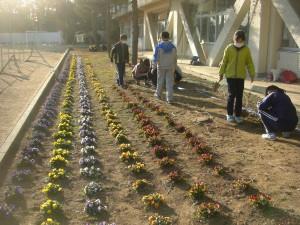 花壇の手入れをする飼育・栽培委員の子どもたち(15:15)