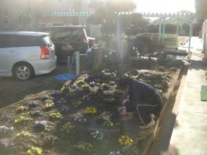 花壇の草取りをする飼育・園芸委員会の子どもたちと先生(15:05)
