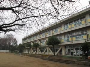新館校舎と桜の木々(6:50)