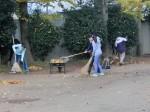5年生の落ち葉清掃