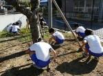 今日の奉仕作業(2年生と5年生) カマを使っての作業
