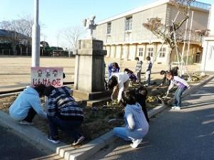 朝の奉仕活動(2年生・5年生) 草抜きや砂取り作業