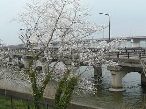 ランチルームからの眺め :神宮橋\