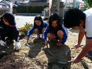 4年生は朝の活動で花壇の世話をしてくれました。ありがとうございました。\\