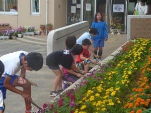 朝の奉仕活動の様子 花壇の草ぬき\