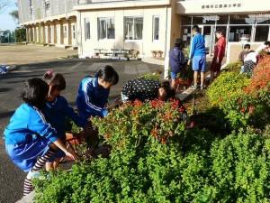 花壇の模様替え作業