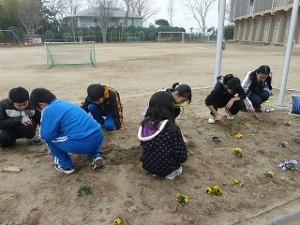 5年生による奉仕活動 草抜き作業
