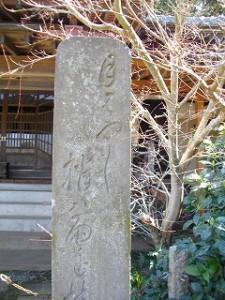 松尾芭蕉の句「月はやし 梢は雨を 持ちながら」雨上がりの情景が思い浮かびます。仏頂和尚と仲が良かったので根本寺に来ました。\