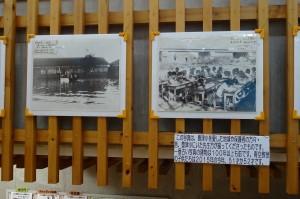 豊津小を愛した地域や保護者,昔の先生方の撮った写真です。平成27年9月5日は「137回目の創立記念日」でした。\