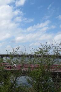 ランチルームからの青空と神宮橋とバイパスの風景です。\